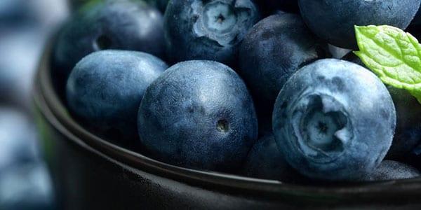 eTranslate - Fødevarer & Ernæring